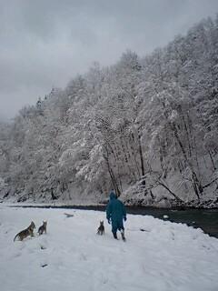 やっぱり雪が好き