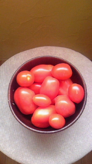 Hurry's Tomatoes
